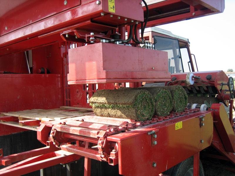 arrotolamento zolla tappeto erboso